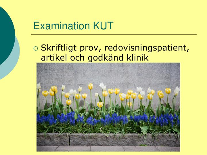 Examination KUT