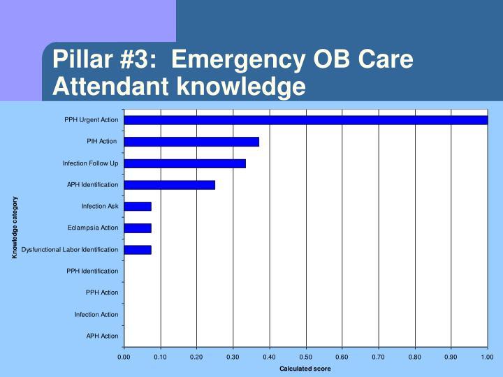 Pillar #3:  Emergency OB Care