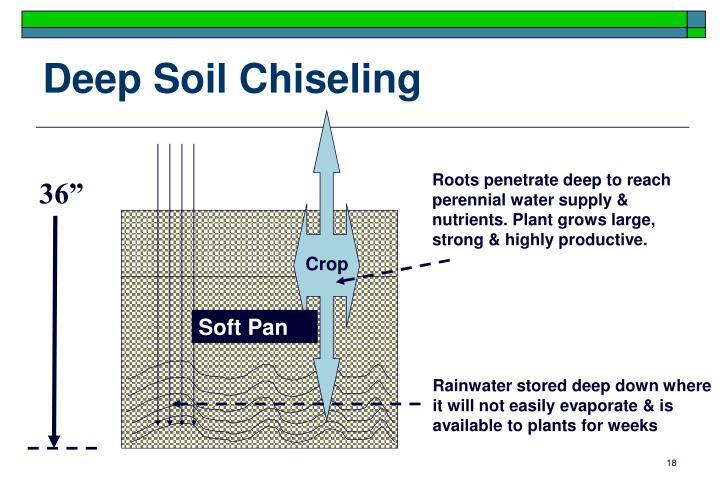 Deep Soil Chiseling