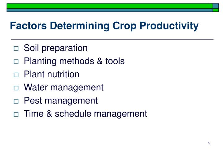 Factors Determining Crop Productivity