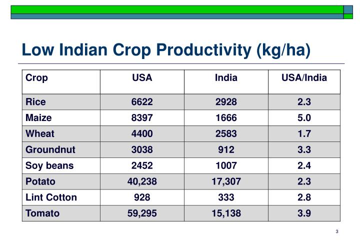 Low indian crop productivity kg ha