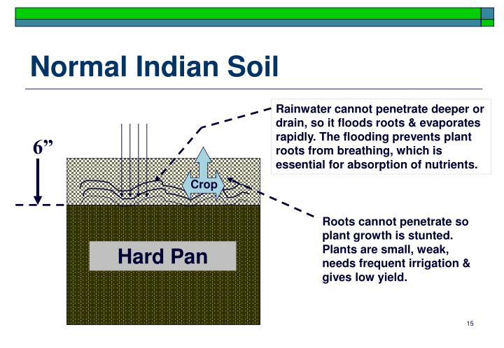 Normal Indian Soil