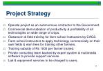 project strategy
