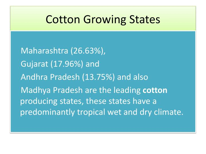 Cotton growing states