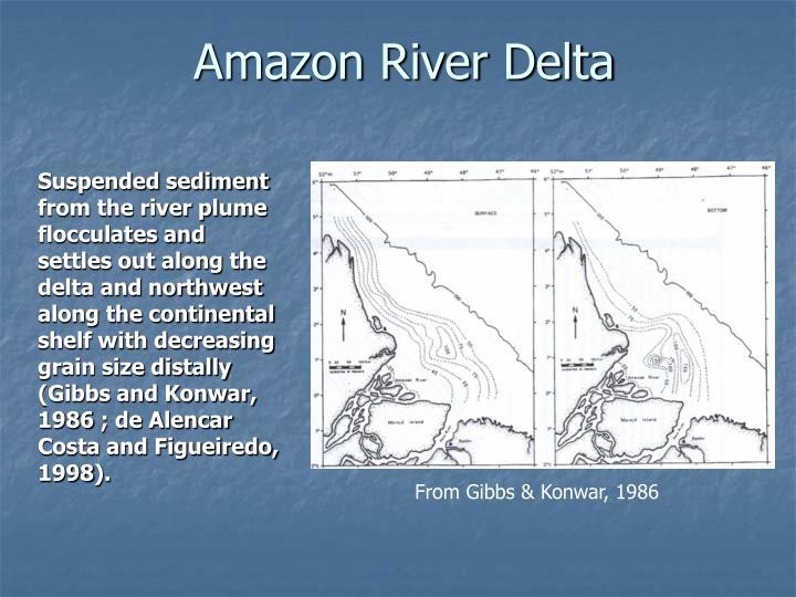 Amazon River Delta