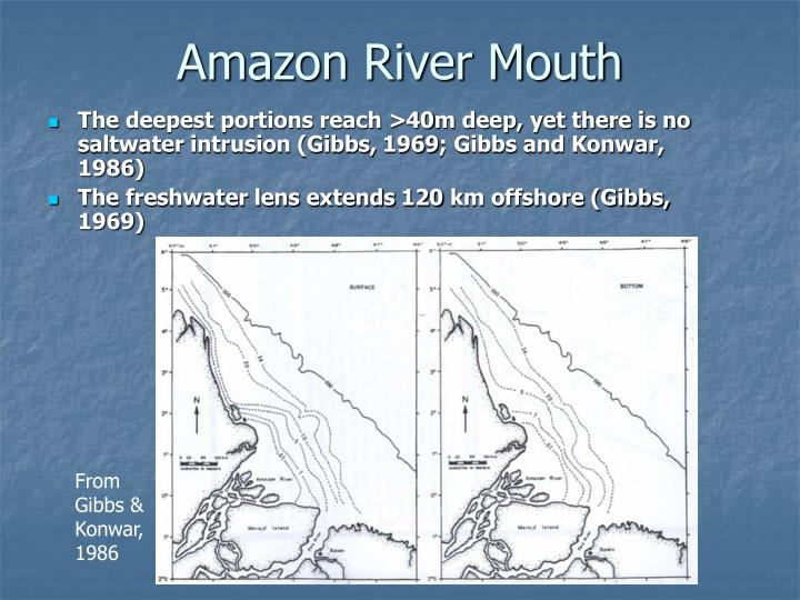 Amazon River Mouth