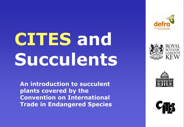 Cites and succulents