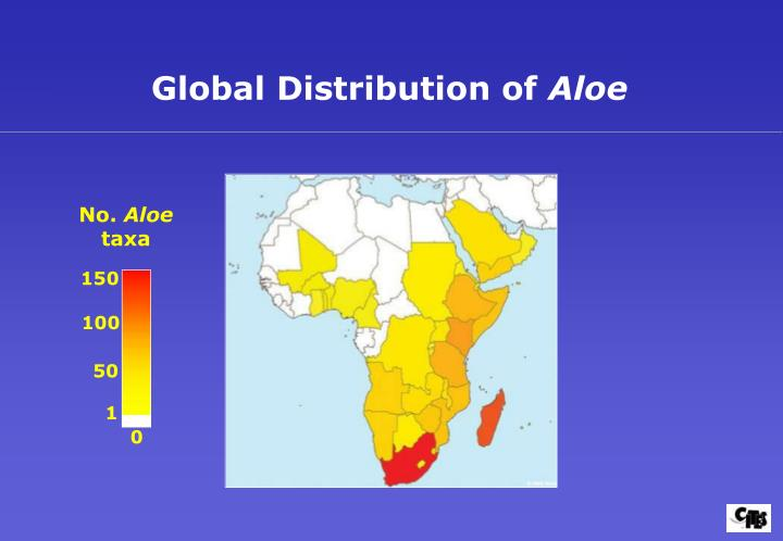 Global Distribution of