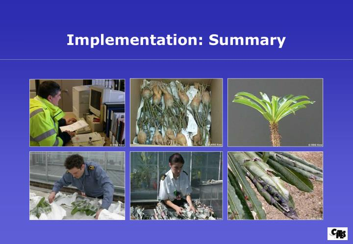 Implementation: Summary