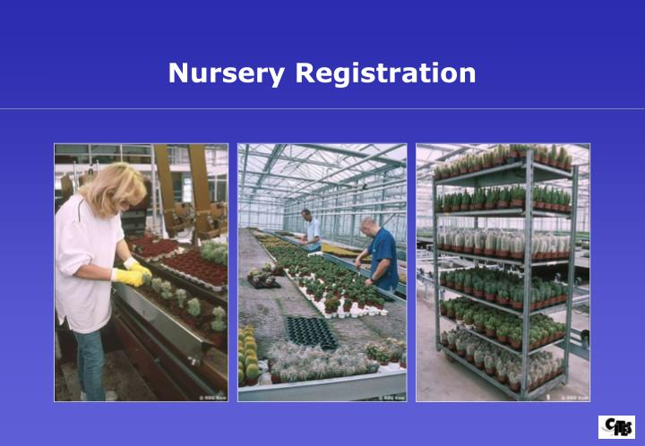 Nursery Registration