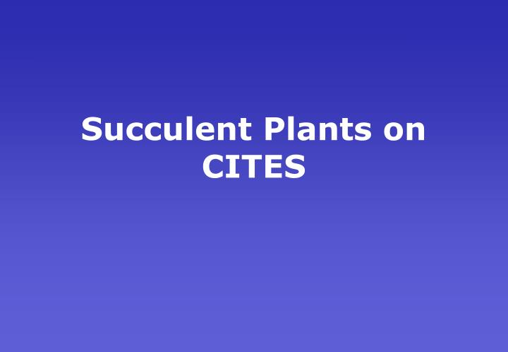 Succulent Plants on CITES