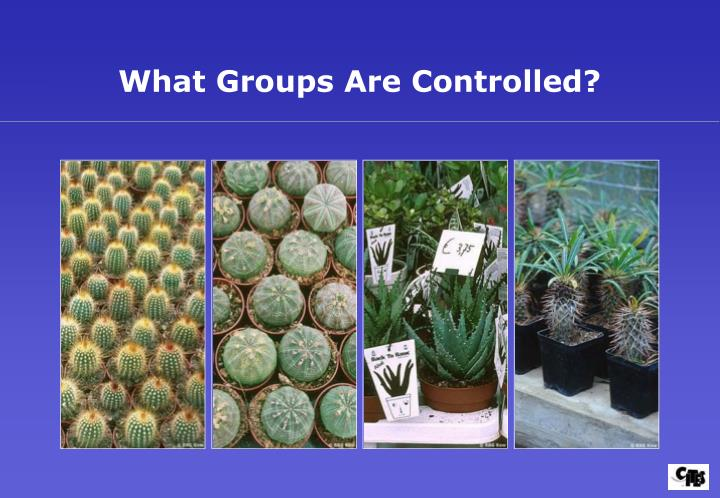 What Groups Are Controlled?