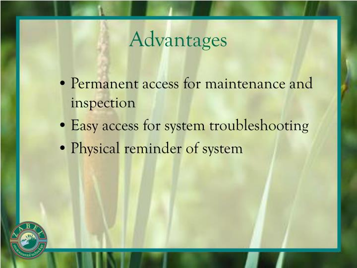 Permanent access for maintenance and inspection