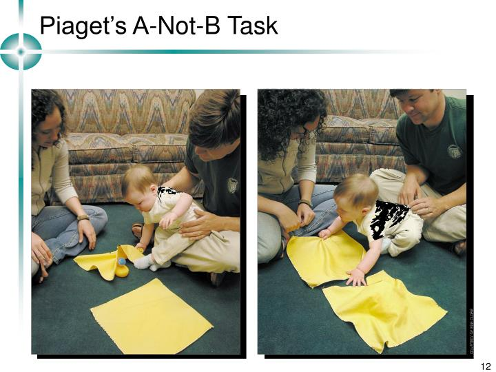 Piaget's A-Not-B Task