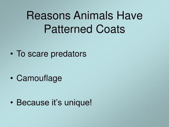 Reasons animals have patterned coats