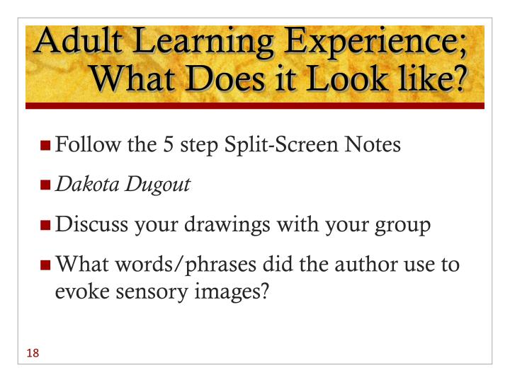 Adult Learning Experience; What Does it Look like?