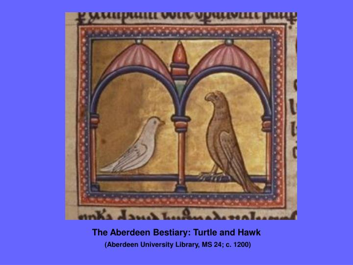 The Aberdeen Bestiary: Turtle and Hawk