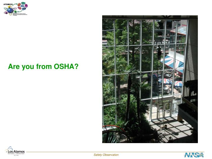 Are you from OSHA?