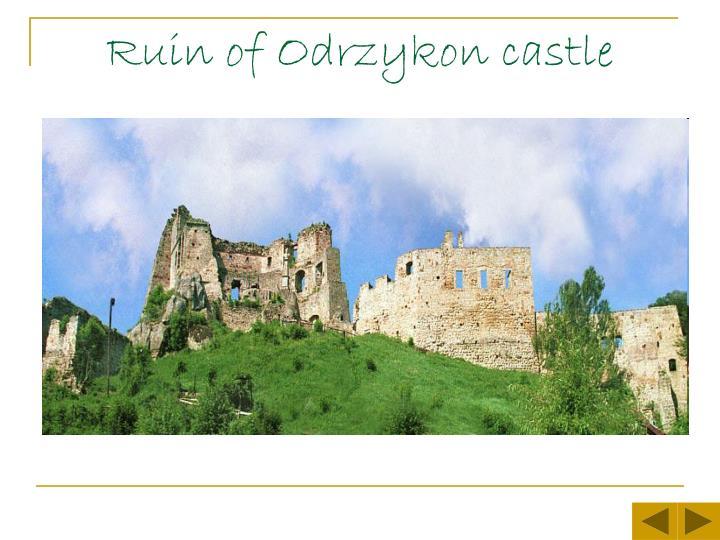 Ruin of Odrzykon castle