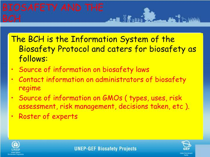BIOSAFETY AND THE BCH