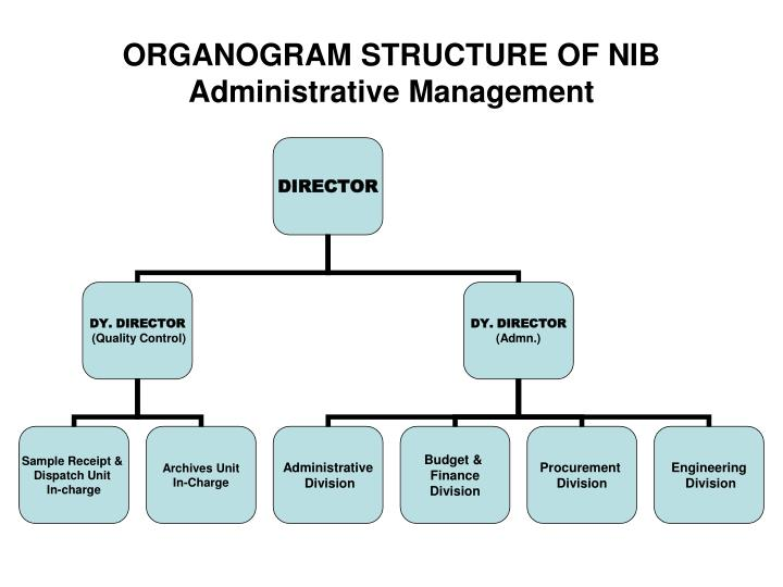management organogram report Free organizational chart template for excel  but those engineers may work on different projects and therefore report to their product managers as well .