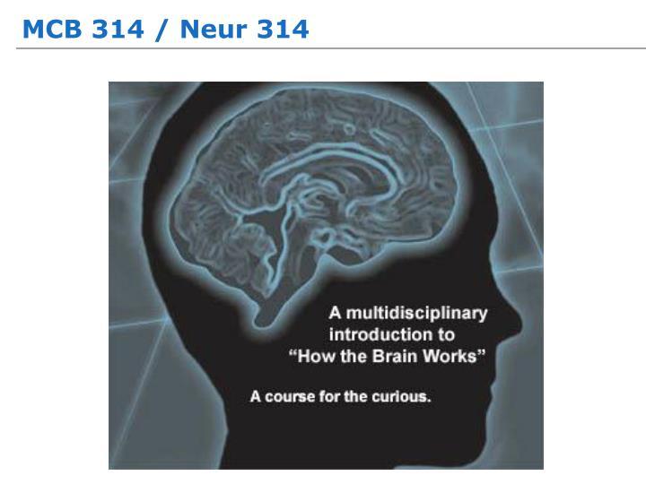 MCB 314 / Neur 314