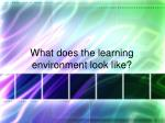 what does the learning environment look like