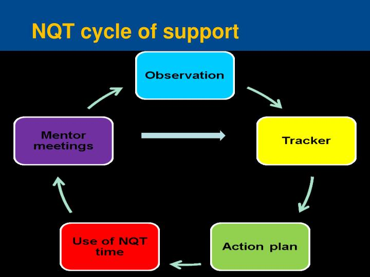 NQT cycle of support