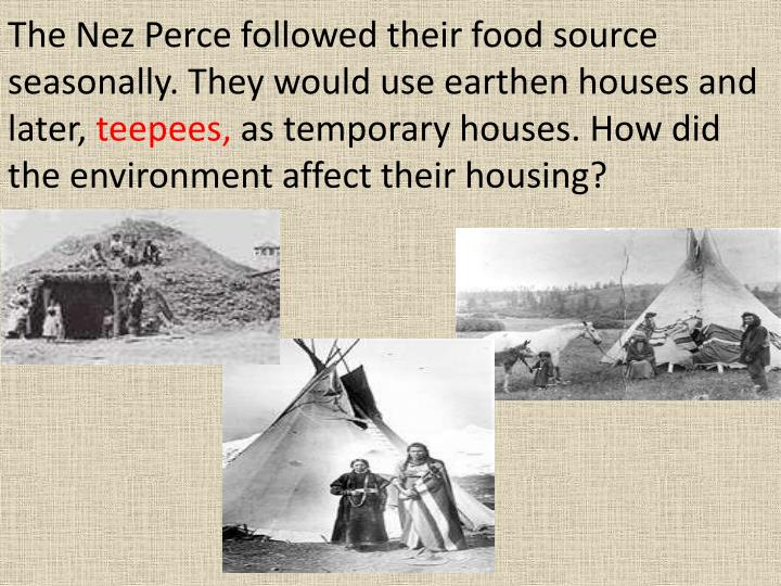 The Nez Perce followed their food source seasonally. They would use earthen houses and later,