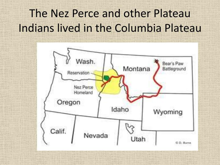 The nez perce and other plateau indians lived in the columbia plateau
