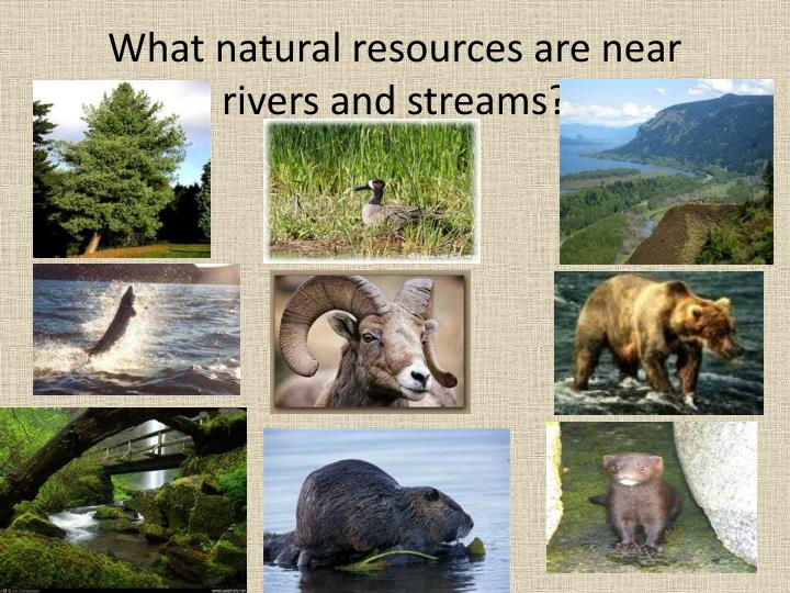What natural resources are near