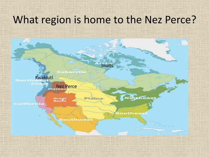 What region is home to the nez perce