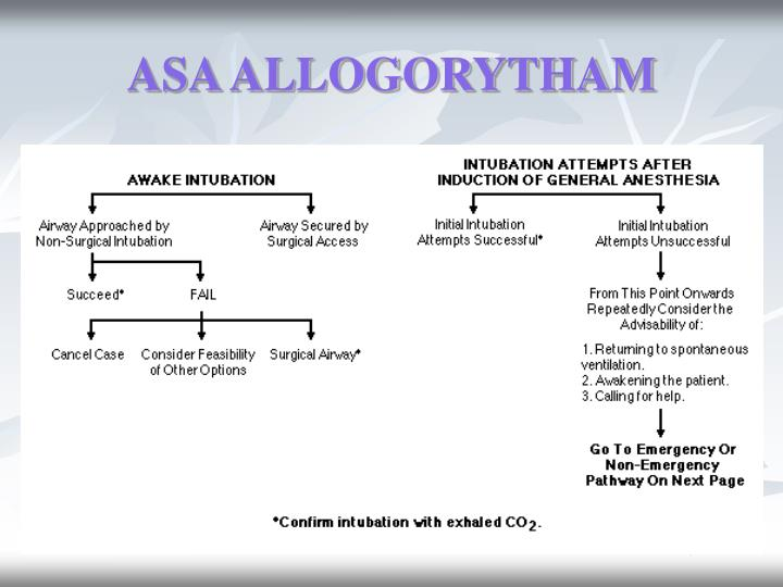 ASA ALLOGORYTHAM