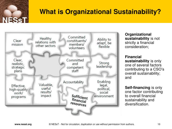 What is Organizational Sustainability?