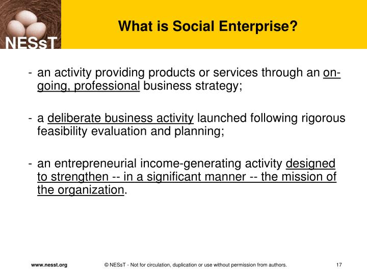 What is Social Enterprise?
