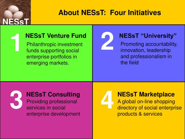 About NESsT:  Four Initiatives