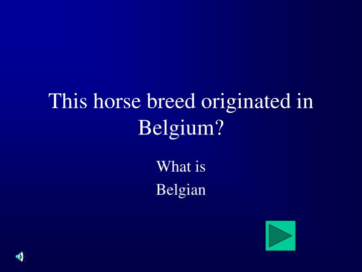 This horse breed originated in Belgium?