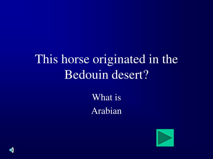 This horse originated in the Bedouin desert?