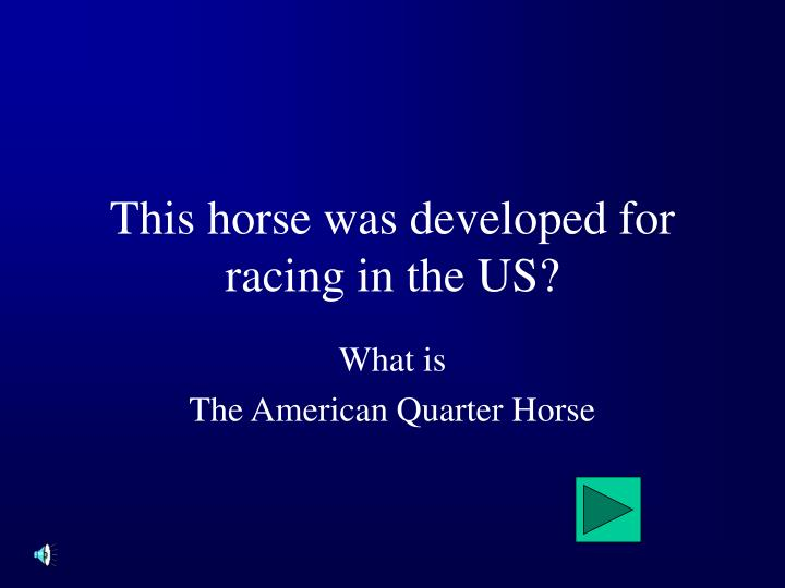 This horse was developed for racing in the US?