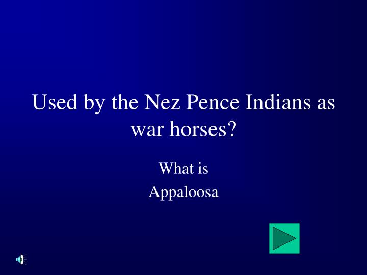 Used by the Nez Pence Indians as war horses?