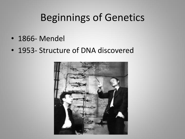 Beginnings of Genetics