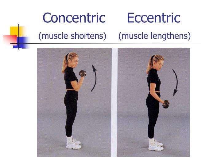 Concentric  Eccentric