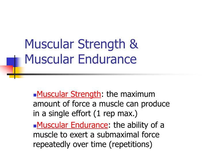 Muscular strength muscular endurance