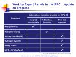 work by expert panels in the ippc update on progress