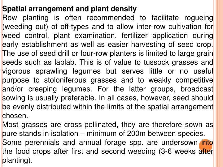 Spatial arrangement and plant density