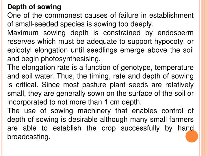Depth of sowing