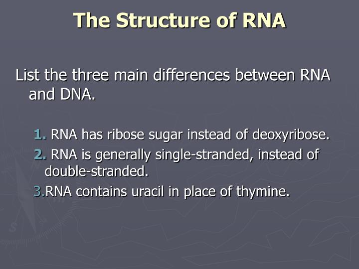 The Structure of RNA