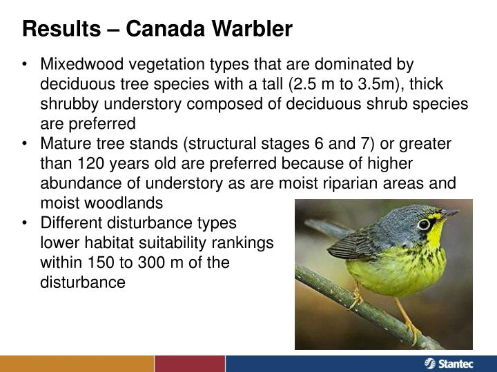 Results – Canada Warbler