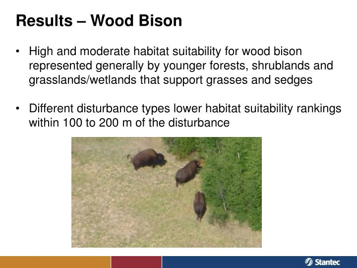 Results – Wood Bison
