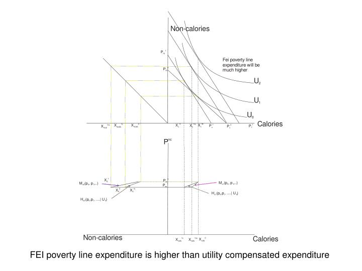 FEI poverty line expenditure is higher than utility compensated expenditure